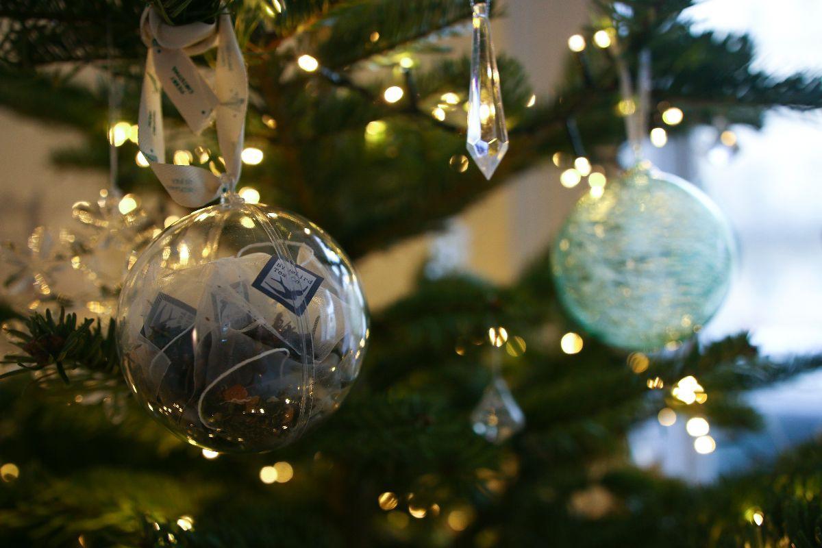 Our Christmas Tree  Poppy Deyes